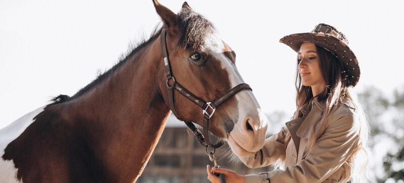 horse-riding-letscrete